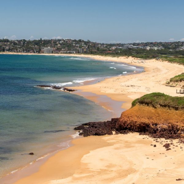 What to do on Dee Why Beach